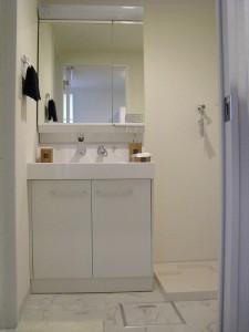 南砂町グリーンハイツ1号棟 洗面室