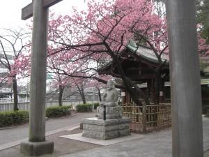 東品川ガーデニア  「荏原神社」
