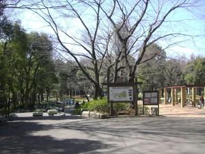 ストークマンション新宿 新宿中央公園