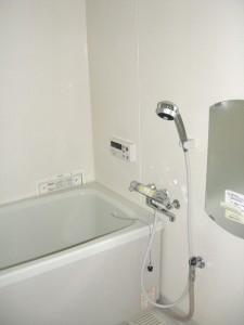 トーア辰巳マンション 浴室