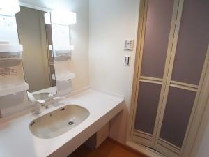 ニュー井の頭マンション 洗面室